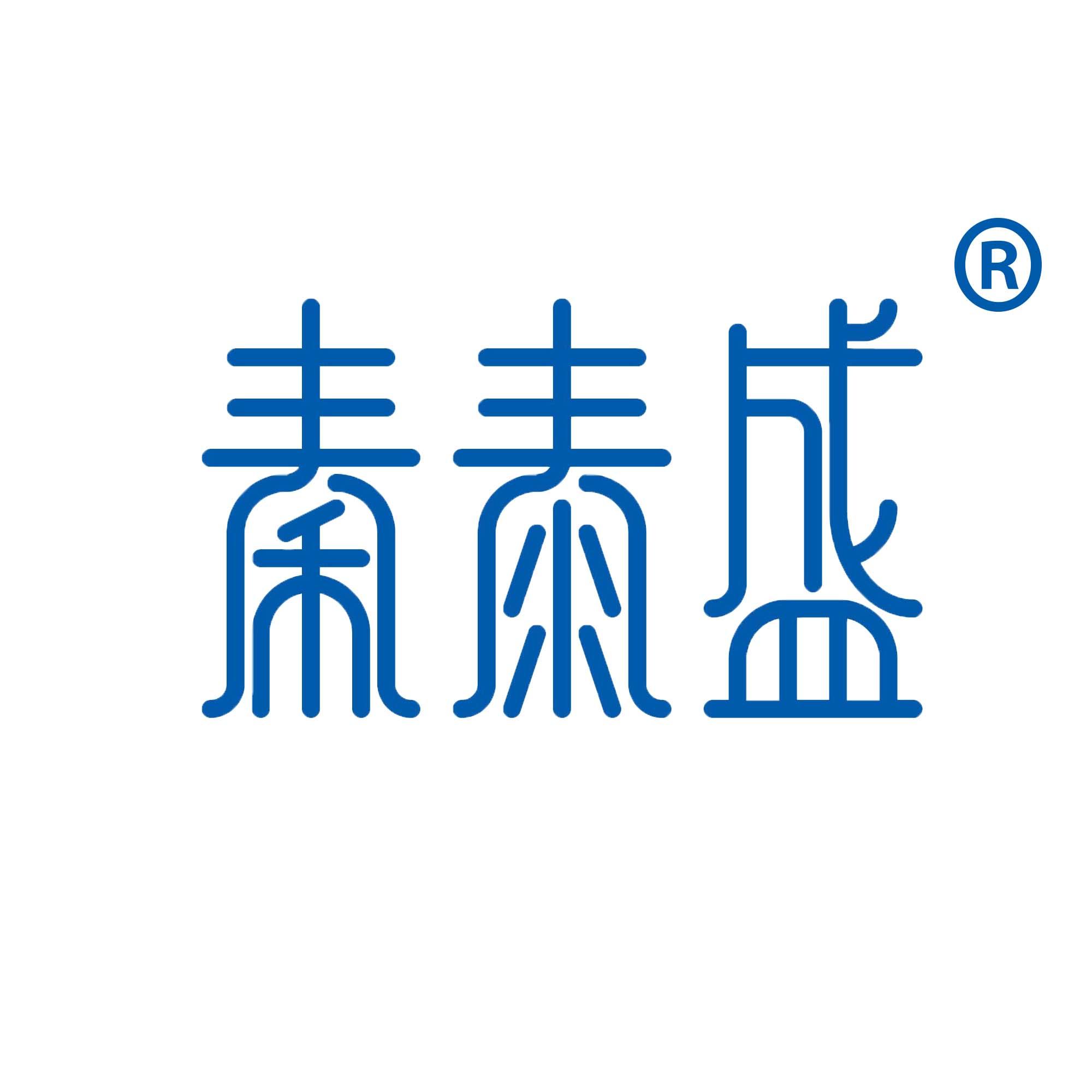 广东秦泰盛智能化科技有限公司