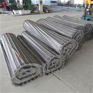 供应不锈钢清洗网带 大螺旋输送链网