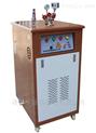 盛华新款电蒸汽发生器