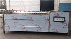 fwd-2000全自動土豆毛滾清洗機