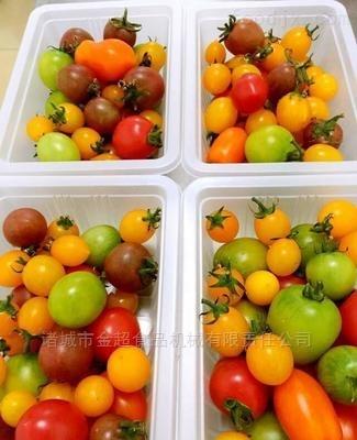 盒装蔬菜连续式封口机
