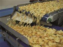 意大利Chiorino薯片、薯条加工输送带