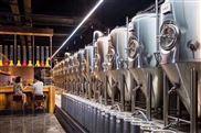 北京史密力維精釀500升啤酒設備多少錢一套