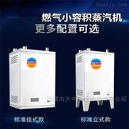 小型微压蒸汽发生器