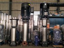 全不銹鋼304耐腐蝕QDL工程用泵 山東勃亞特