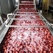 廠家直供臭氧清洗機/果蔬淋噴清洗設備