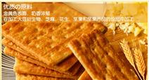 饱腹代餐全麦饼干 苏打饼干生产线