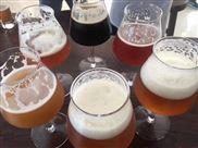 啤酒加工设备多少钱  啤酒设备生产厂家