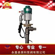 手提式防爆电动油桶泵