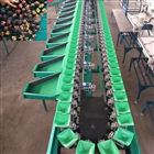 XGJ-SZ南国梨选果机,高效多等级全自动分选大小