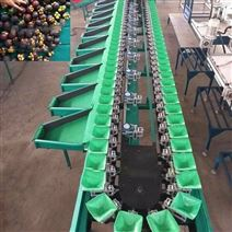 百香果分選機廠家直銷 電商都在用的分揀機