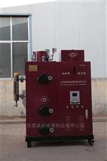 LGH印染厂小型全自动免检生物质蒸汽发生器