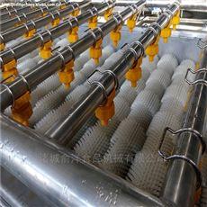 云南特产红皮土豆毛刷清洗去皮机