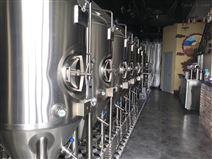 酿造精酿啤酒的机器多少钱