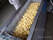 土豆清洗去皮机1.2m毛辊可定制