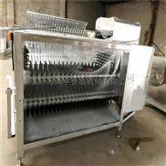 中型-中型羊刨毛机-鸿宇食品机械-羊屠宰设备