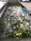 泡菜果蔬气泡清洗机