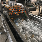 供应果蔬气泡清洗机厂家直销