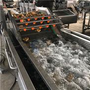 蔬菜气泡清洗机流水线设备