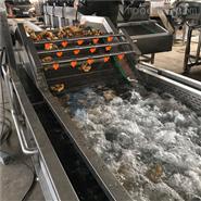 果蔬气泡清洗机净菜加工设备