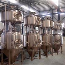 史密力維小型啤酒廠生產設備 原漿啤酒設備