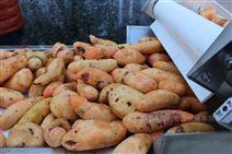 土豆红薯 地瓜 芋头 山药清洗去皮机