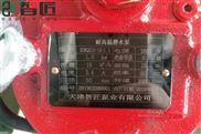 天津 智匠泵業 耐高溫排污潛水泵