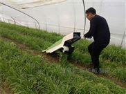 新型电动韭菜收割机