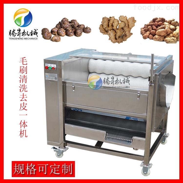 工厂定制毛刷清洗脱皮机 土豆生姜去皮机