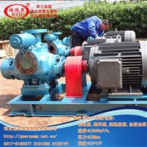 碳五石油树脂输送泵用双螺杆泵