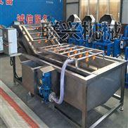 LX-5000-果蔬清洗机,蔬菜清洗机,厂家直销