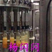 成套塑料瓶装果汁饮料灌装机械设备
