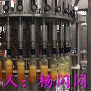 果汁饮料灌装机装备