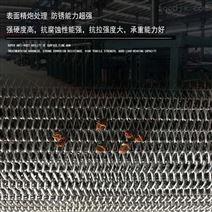 宁津不锈钢网带