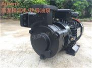 WM-10-120泵高温模温机泵 热水循环泵