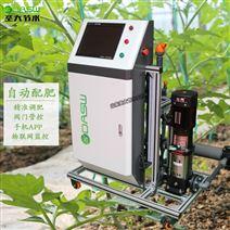 智能水肥一体机温室水培设备自动控制施肥机