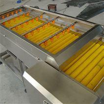 邁旭清洗設備  土豆毛輥清洗機