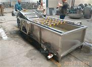 专业定制香葱清洗机净菜加工设备质量保证