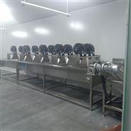 供应新型高压气泡涡流土豆清洗机 厂家直销