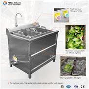 全自动小型果蔬消毒洗菜机清洗机