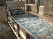 供应玉米清洗机 气泡喷淋清洗设备厂家直销