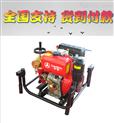 萨登2.5寸柴油消防泵DS65XP高压水泵