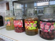 东莞酿酒|高埗,中堂蒸酒草莓酒是怎样做的