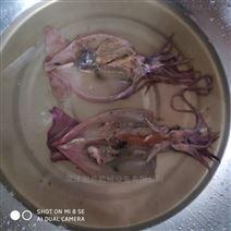 魷魚去內臟機