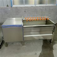 红枣毛辊清洗机