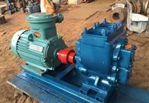 YHCB圓弧泵帶保護閥的齒輪泵廠家-紅旗泵業