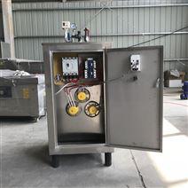 不锈钢小型高压生物颗粒蒸汽发生器