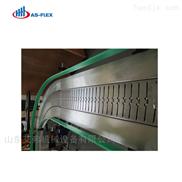 廠家直銷專業定制啤酒鏈板輸送機