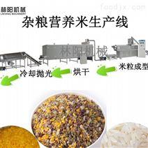 雜糧米仿真米生產機械設備