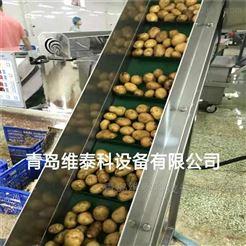 土豆去皮机多少钱